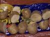 Cut potato seeds